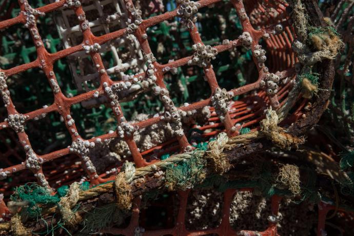 Redes de pescadores en Lisboa